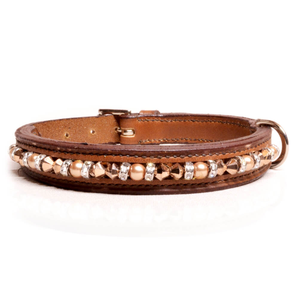 Brown Gold/Brown Dog Collar